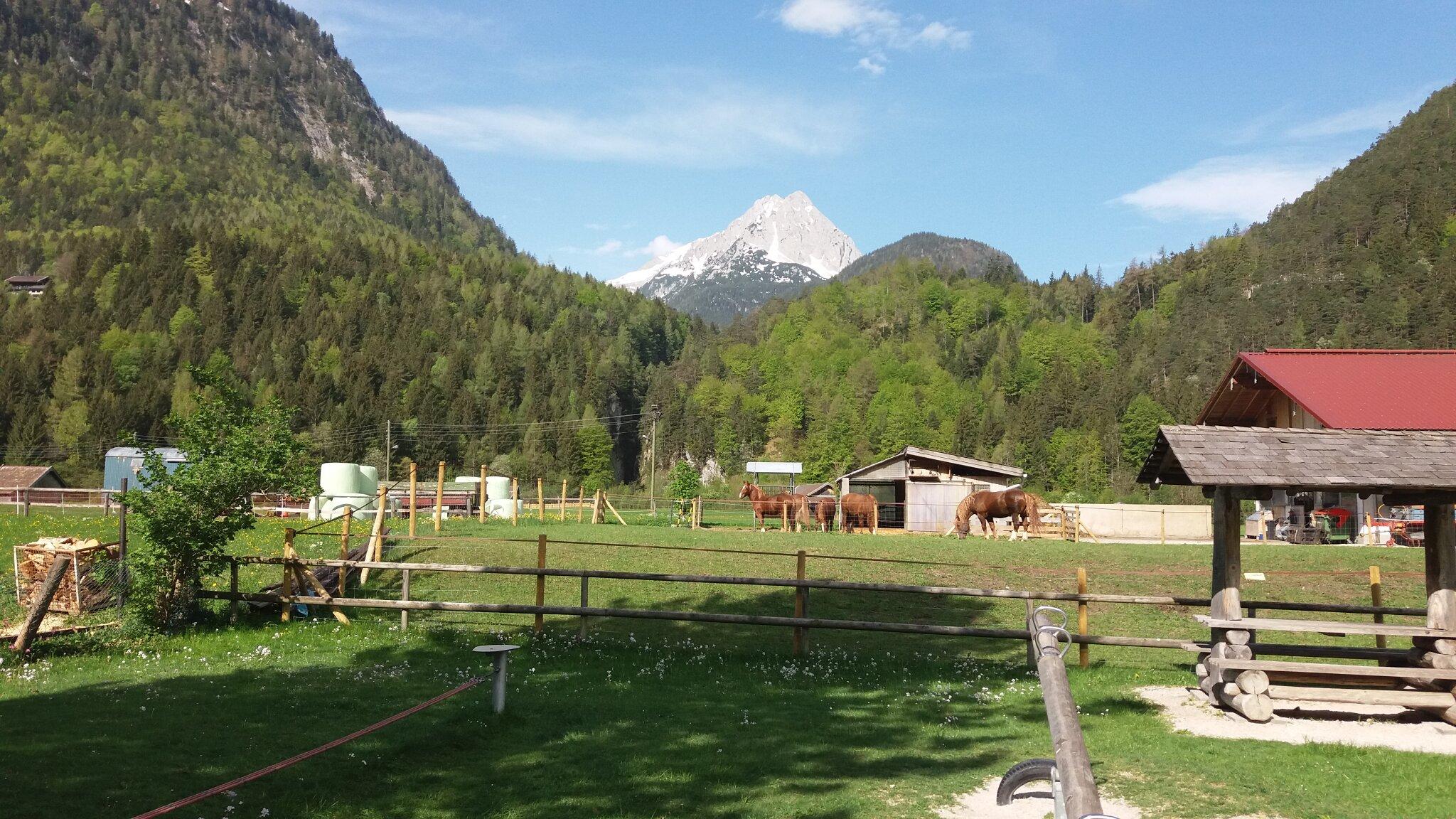 Kresenzerhof im Winter