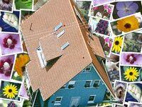 Ferienwohnung Füxle in Herbolzheim - kleines Detailbild
