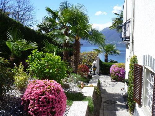 Blumenterrasse neben dem Haus