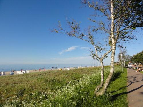 Umgebung von Ferienwohnung Kirchhoff