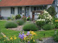 Gästehaus Hauser, Ferienwohnung   60 m² in Rust - kleines Detailbild