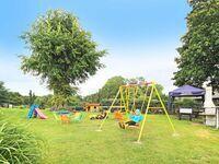 Familiäre Pension & Ferienwohnungen  'Lindenhof ', Sommerlinde in Dargen OT Kachlin - kleines Detailbild