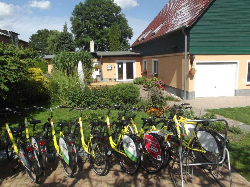 Familiäre Pension & Ferienwohnungen 'Lindenhof ',
