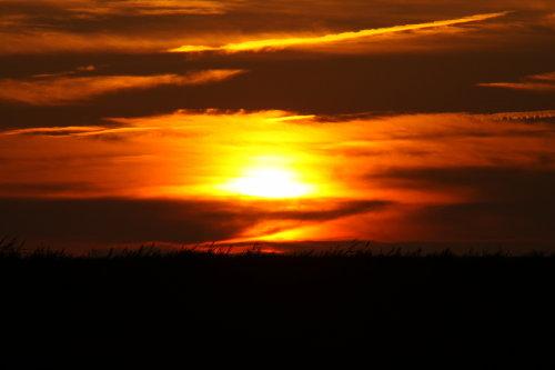 Sonnenuntergang am Deich von Ockholm
