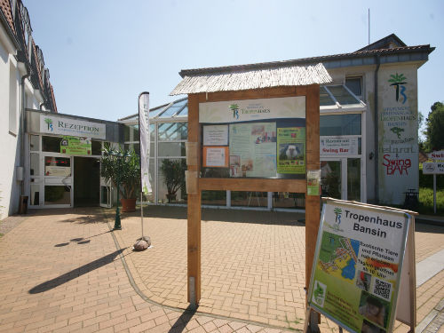Tropenhaus in Bansin - Minizoo