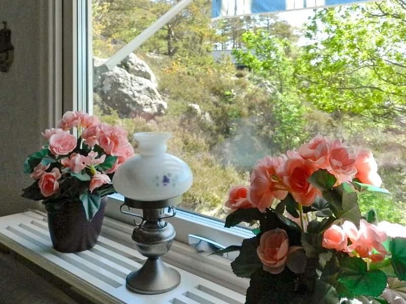 Zusatzbild Nr. 14 von Ferienhaus No. 67869 in Fiskebäckskil
