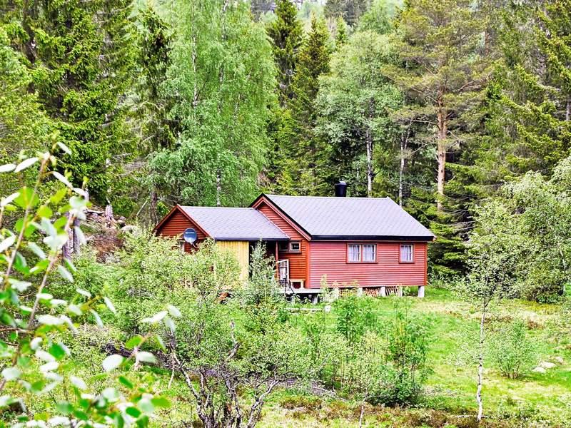 Detailbild von Ferienhaus No. 68038 in Åseral
