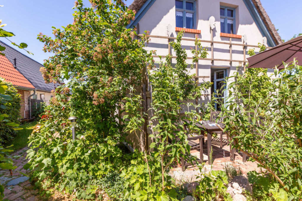 Reetgedecktes Ferienhaus Seelchen, Seelchen