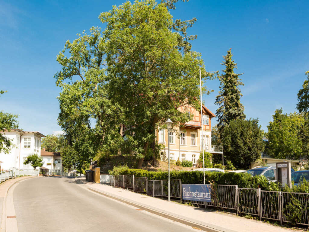 Haus auf dem H�gel - Die Klassische, H�gel Wohnung
