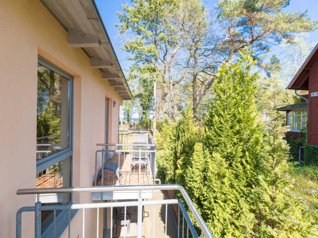 Haus auf dem H�gel - Die Moderne, H�gel Wohnung 11
