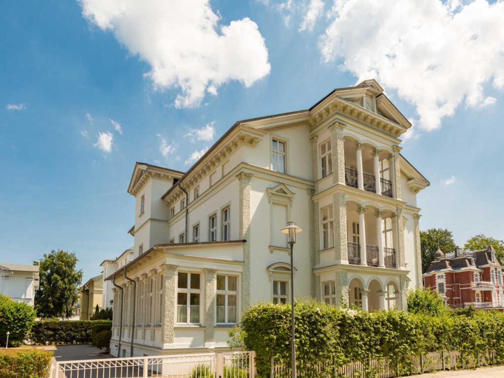 Villa Franz Josef, Franz Josef 8