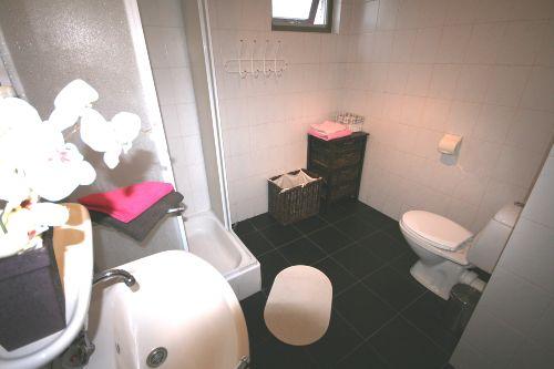 Badezimmer mit WC Dusche und Waschbecken