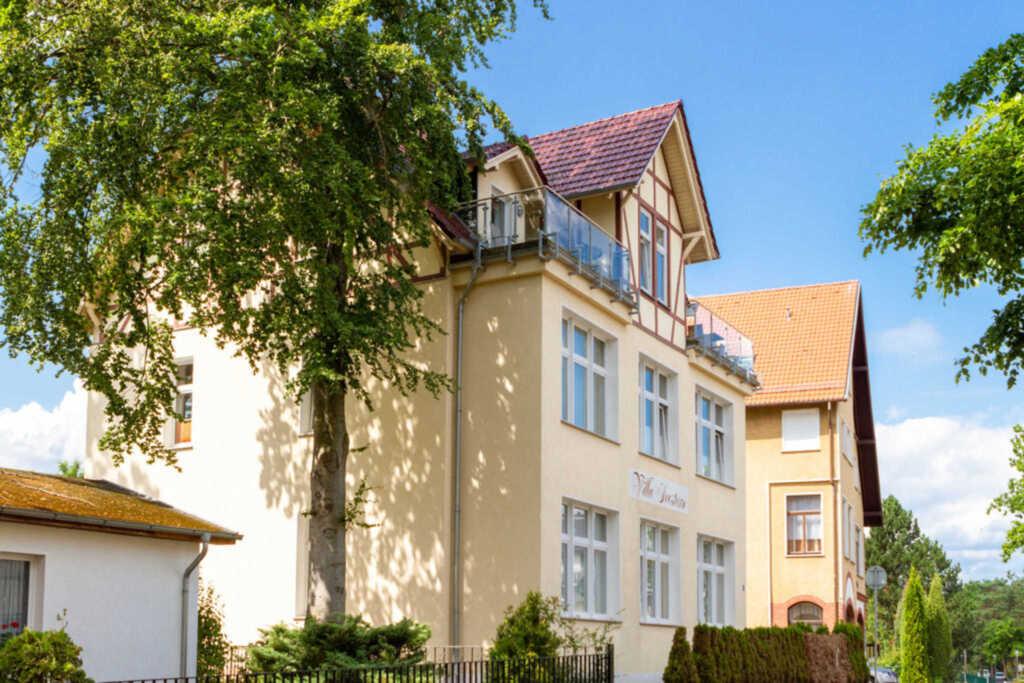 Villa Seestern, Seestern 6