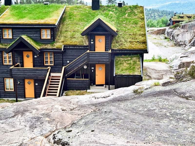 Detailbild von Ferienhaus No. 68087 in Åseral