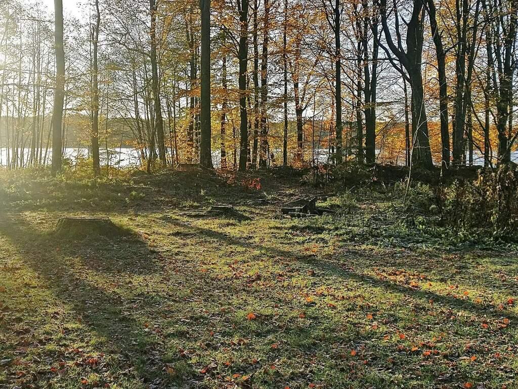 Zusatzbild Nr. 03 von Ferienhaus No. 14881 in Sösdala