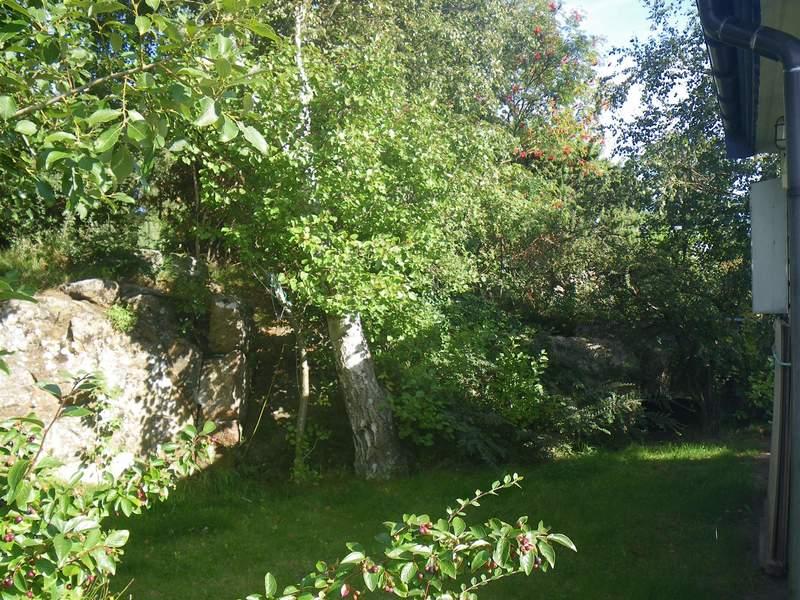 Zusatzbild Nr. 04 von Ferienhaus No. 16418 in Falkenberg