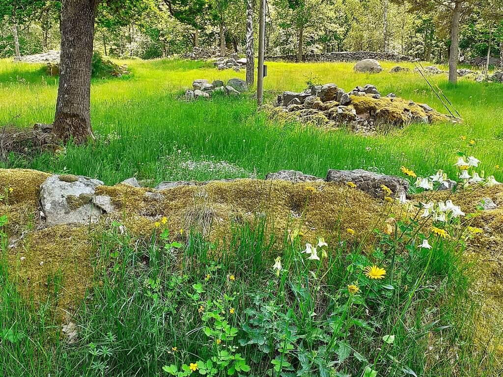 Zusatzbild Nr. 03 von Ferienhaus No. 35199 in Alsterbro