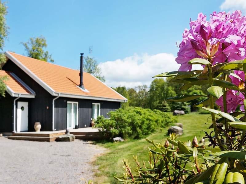 Zusatzbild Nr. 01 von Ferienhaus No. 38469 in Våxtorp