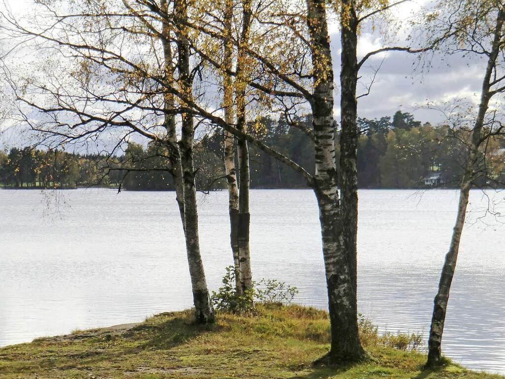 Zusatzbild Nr. 03 von Ferienhaus No. 40708 in Unnaryd