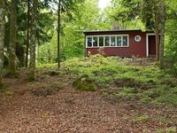 Ferienhaus No. 53122 in Hästveda in Hästveda - kleines Detailbild