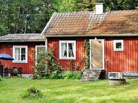 Ferienhaus in Tingsryd, Haus Nr. 55817 in Tingsryd - kleines Detailbild