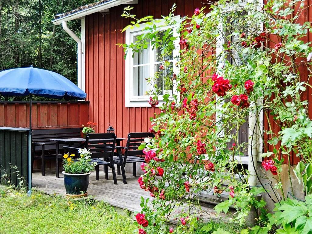 Umgebung von Ferienhaus No. 55817 in Tingsryd