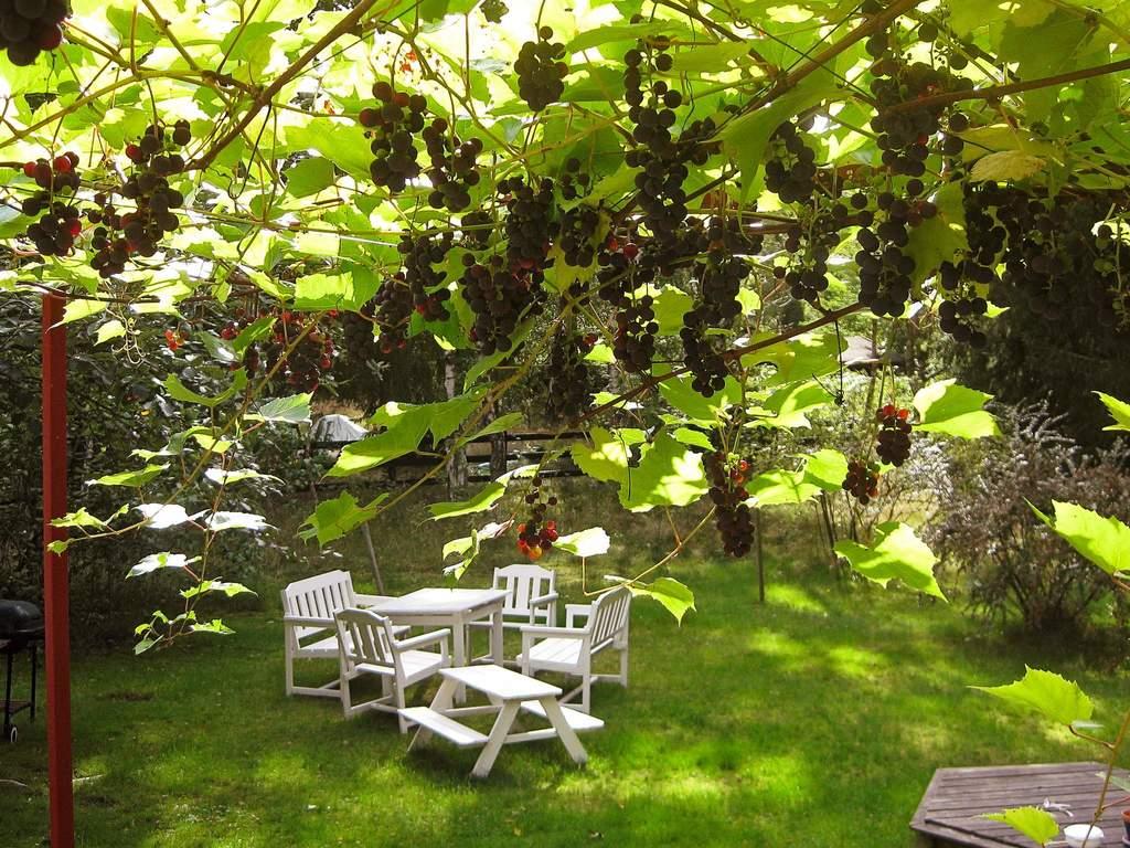 Umgebung von Ferienhaus No. 74839 in Landskrona