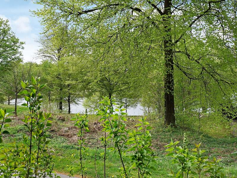 Zusatzbild Nr. 11 von Ferienhaus No. 92879 in Tjörnarp