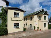 Bunter Hund 18 - 'Goldrausch'(A), 'Goldrausch' in Zinnowitz (Seebad) - kleines Detailbild