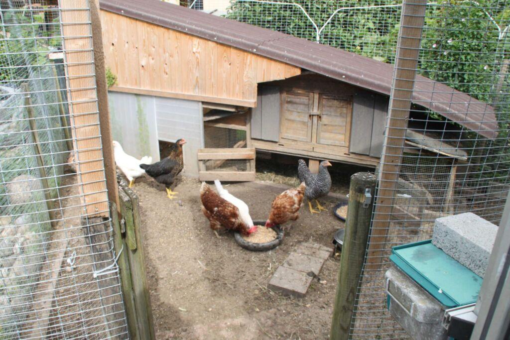 Gästehaus Schwien, Ferienwohnung 66 qm, für max. 6