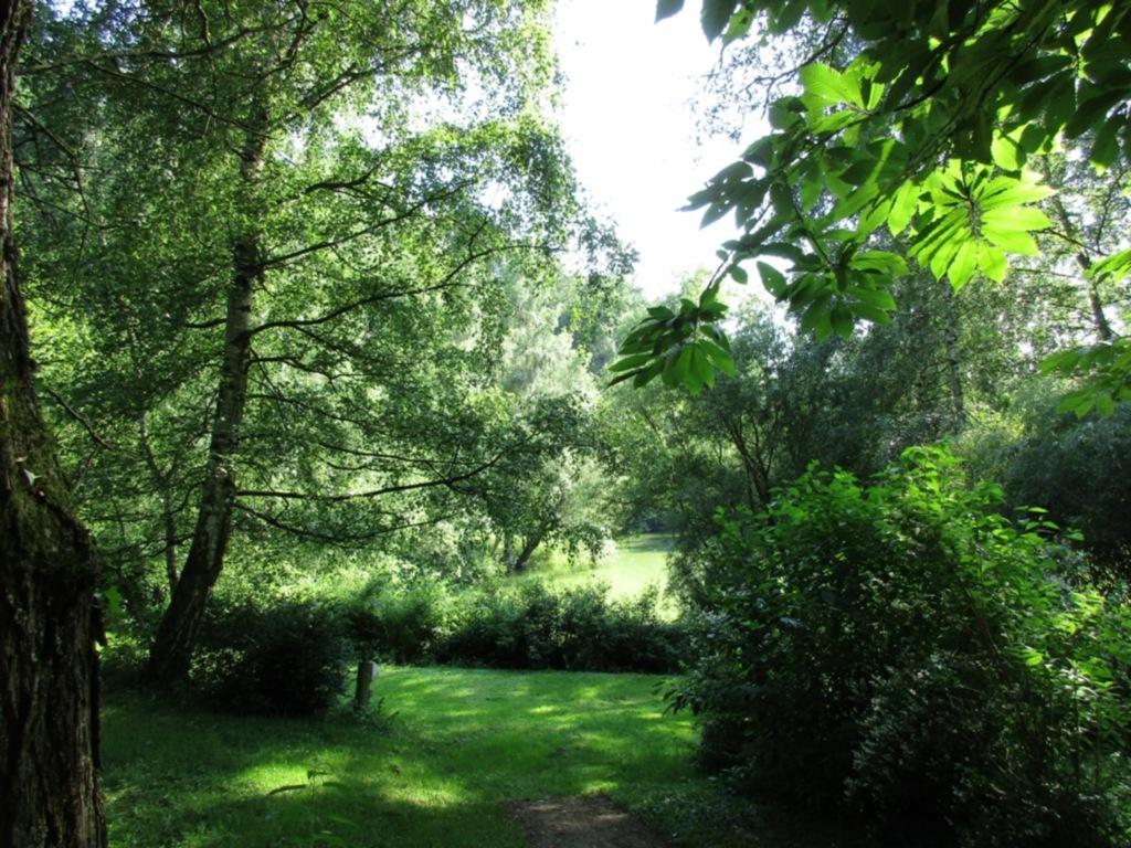 Ferienwohnung Hutzwiese