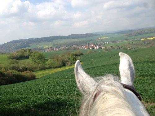 Schimberg und Umgebung - auch mit Pferd