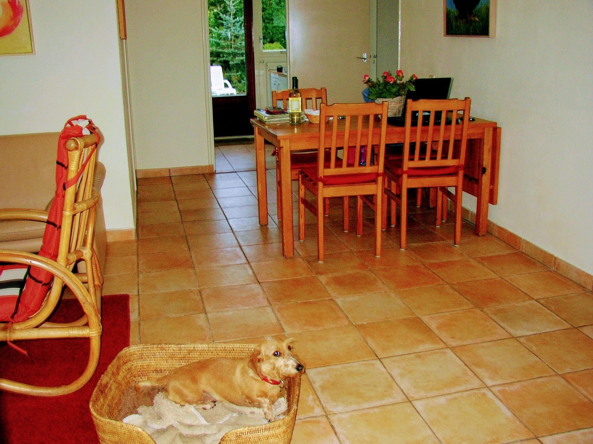 Wohnzimmer, sonnig!