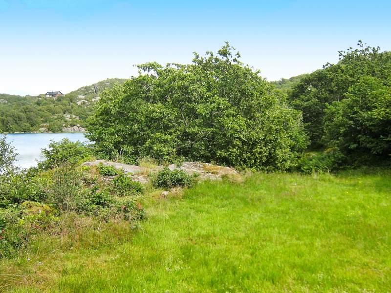 Umgebung von Ferienhaus No. 69510 in Lyngdal