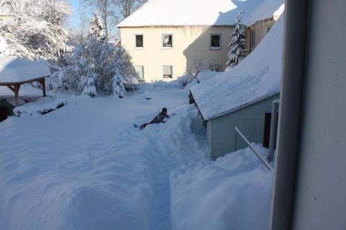 Unser Garten im Winter