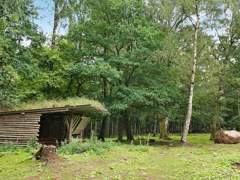 Zusatzbild Nr. 06 von Ferienhaus No. 69905 in Ljungbyhed