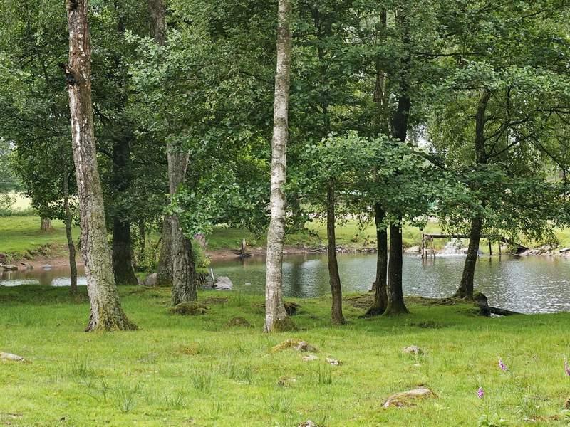 Zusatzbild Nr. 07 von Ferienhaus No. 69905 in Ljungbyhed