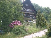 unser Haus im Frühling mit Blumenwiese