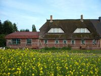 Landhaus Maltzien - Heltzel-Jurisch GbR, Ferienwohnung 3 - Vilm in Zudar - kleines Detailbild
