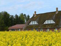 Landhaus Maltzien - Heltzel-Jurisch GbR, Ferienwohnung 2 - Koos in Zudar - kleines Detailbild