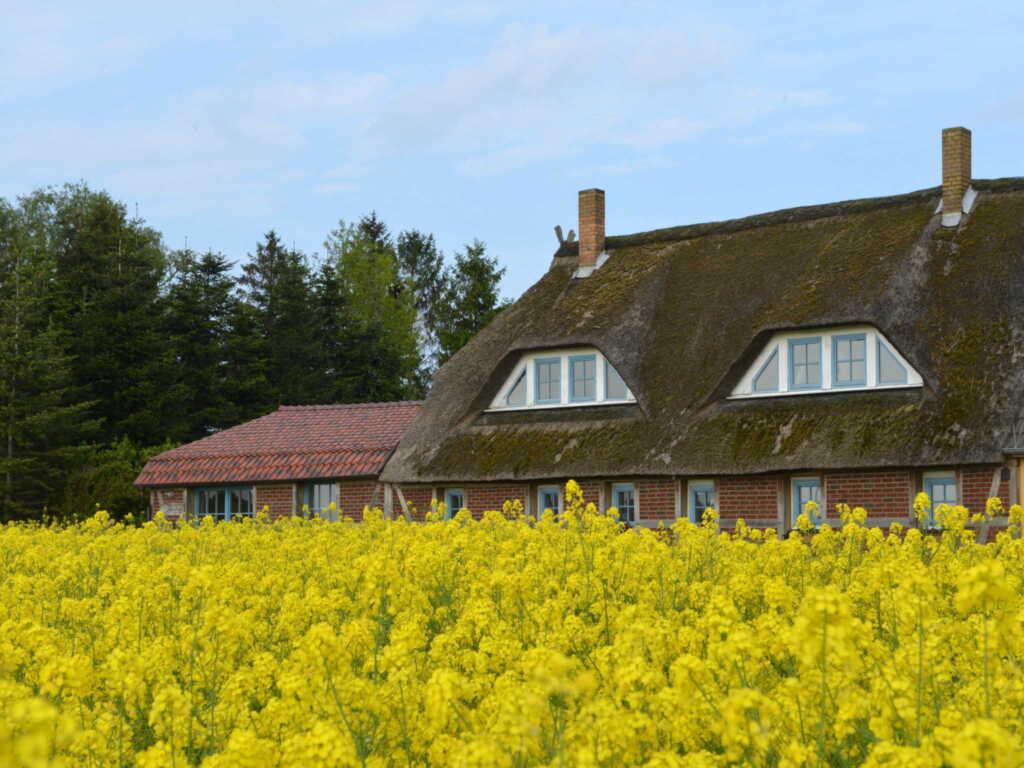 Landhaus Maltzien - Heltzel-Jurisch GbR, Ferienwoh