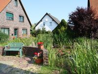 Ferienhaus  16, Ferienwohnung 16-4 in Trassenheide (Ostseebad) - kleines Detailbild