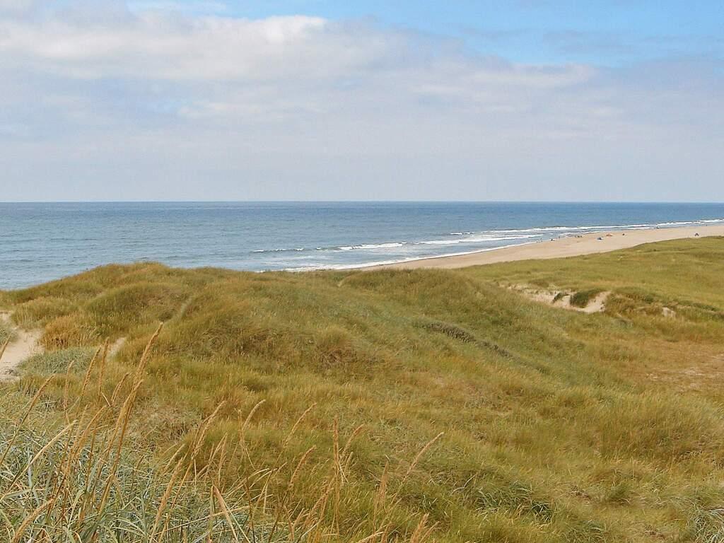 Umgebung von Ferienhaus No. 66044 in Harboøre