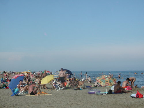 Strandbetrieb im Hochsommer-