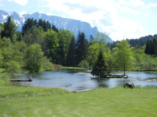 Liegewiese am Teich
