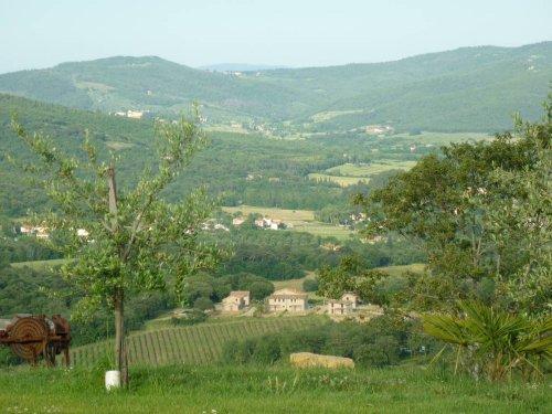 Panorama von Garten und Terrasse