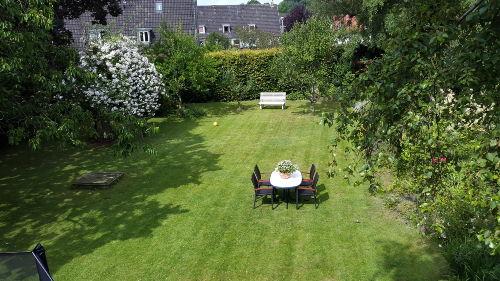 Der schöne Garten im Juli