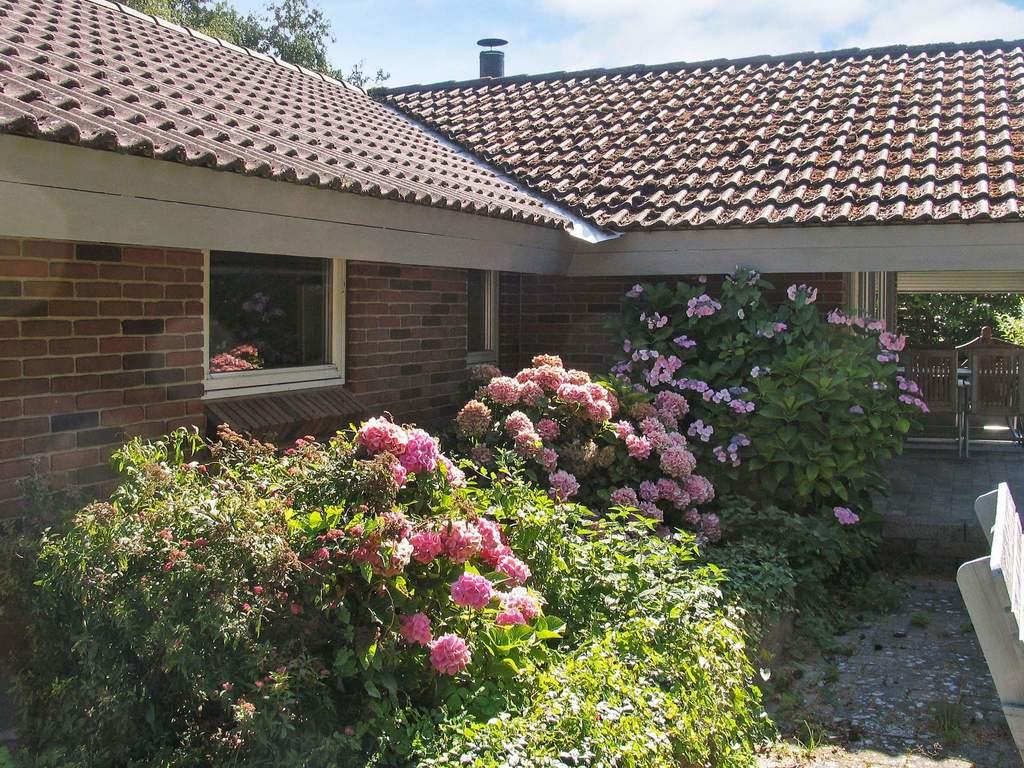 Zusatzbild Nr. 01 von Ferienhaus No. 71915 in Gedser