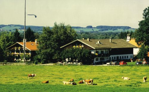 Ansicht vom Ferienhaus mit Bauernhaus
