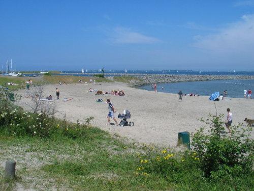 Strand am Grevelingensee in Den Osse